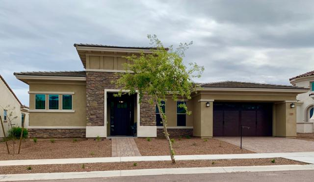20949 W College Drive, Buckeye, AZ 85396 (MLS #5891206) :: Arizona 1 Real Estate Team