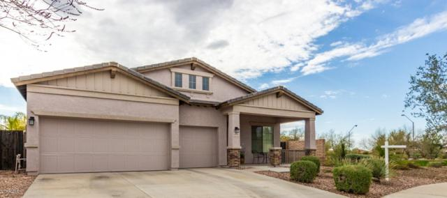 12795 W Lone Tree Trail, Peoria, AZ 85383 (MLS #5891735) :: Yost Realty Group at RE/MAX Casa Grande