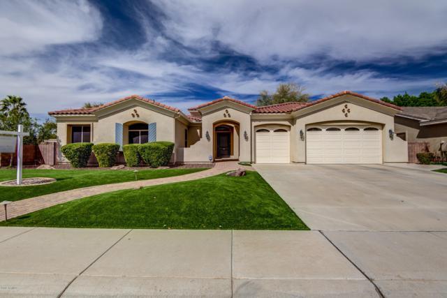 418 E Phelps Street, Gilbert, AZ 85295 (MLS #5891900) :: Yost Realty Group at RE/MAX Casa Grande