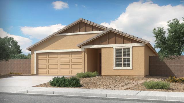 87 5TH Avenue W, Buckeye, AZ 85326 (MLS #5892175) :: Occasio Realty