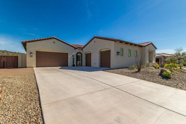 30617 N 117TH Drive, Peoria, AZ 85383 (MLS #5892334) :: Yost Realty Group at RE/MAX Casa Grande