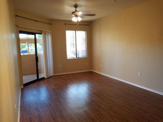 5302 E Van Buren Street E #1064, Phoenix, AZ 85008 (MLS #5892352) :: The Everest Team at My Home Group