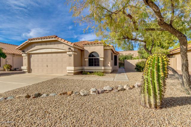 1646 W Gunstock Loop, Chandler, AZ 85286 (MLS #5892487) :: Yost Realty Group at RE/MAX Casa Grande