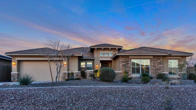 12115 S 180th Drive, Goodyear, AZ 85338 (MLS #5892503) :: CC & Co. Real Estate Team