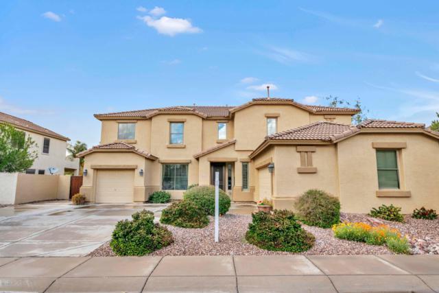 1694 E Locust Place, Chandler, AZ 85286 (MLS #5892529) :: Yost Realty Group at RE/MAX Casa Grande