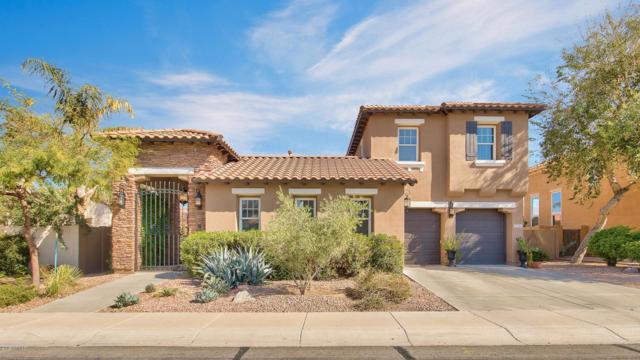 2230 E Azalea Drive, Chandler, AZ 85286 (MLS #5892720) :: The W Group