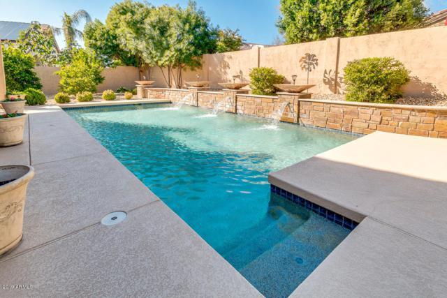 7020 W Firebird Drive, Glendale, AZ 85308 (MLS #5893139) :: Occasio Realty
