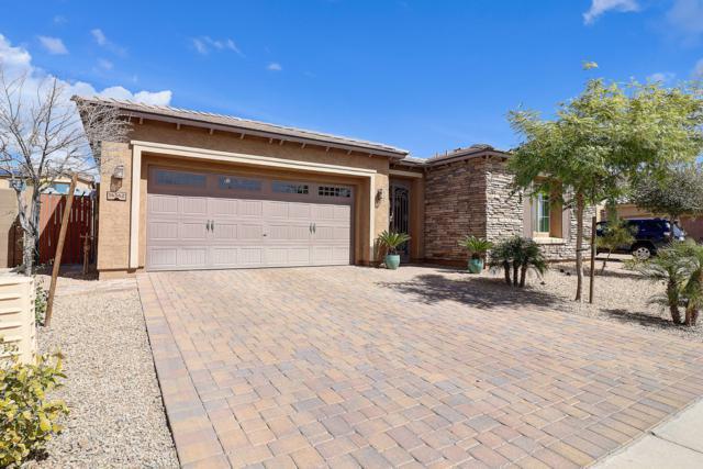 14362 W Desert Flower Drive, Goodyear, AZ 85395 (MLS #5893191) :: Keller Williams Realty Phoenix