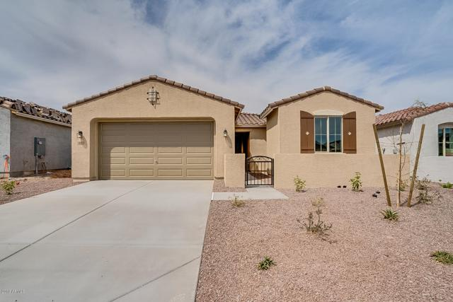 18172 W Carlota Lane, Surprise, AZ 85387 (MLS #5893443) :: Team Wilson Real Estate