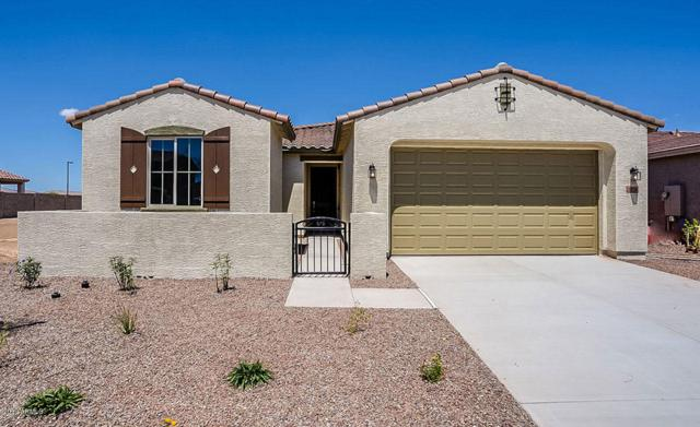 18156 W Via Montoya Drive, Surprise, AZ 85387 (MLS #5893472) :: Openshaw Real Estate Group in partnership with The Jesse Herfel Real Estate Group