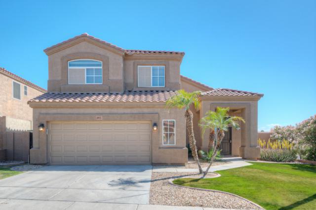 853 W Hemlock Way, Chandler, AZ 85248 (MLS #5893538) :: Yost Realty Group at RE/MAX Casa Grande