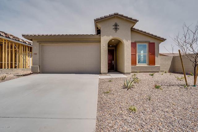 29961 N 115TH Glen, Peoria, AZ 85383 (MLS #5893583) :: The Results Group