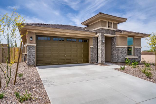 11445 W Nadine Way, Peoria, AZ 85383 (MLS #5893598) :: The Results Group