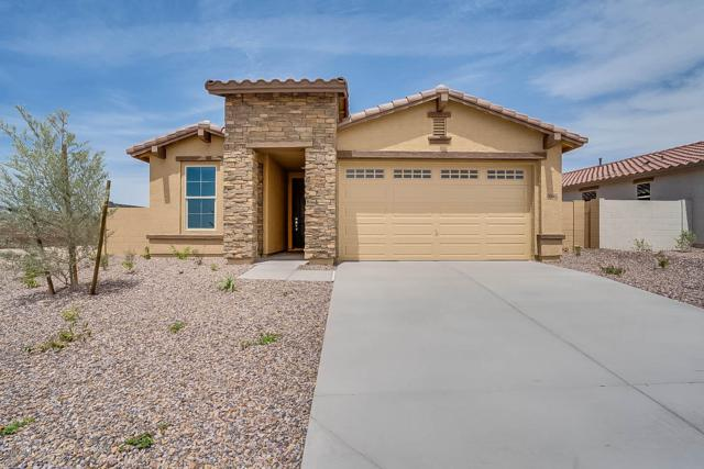 11562 W Lone Tree Trail, Peoria, AZ 85383 (MLS #5893621) :: The Results Group