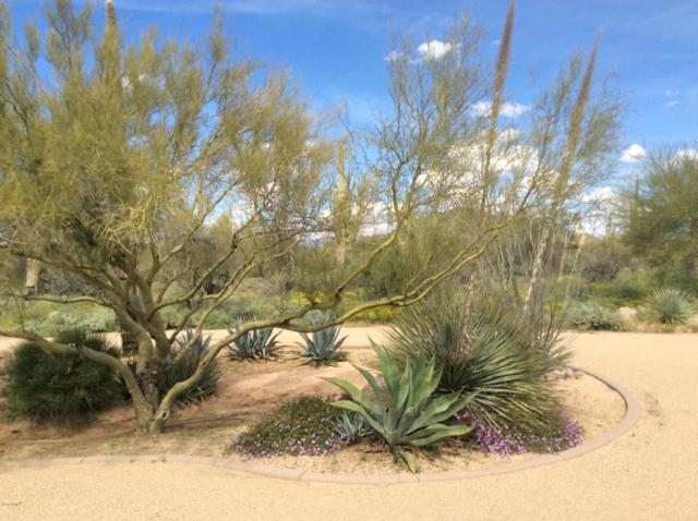 7608 E Hunter Court, Scottsdale, AZ 85266 (MLS #5893733) :: Yost Realty Group at RE/MAX Casa Grande