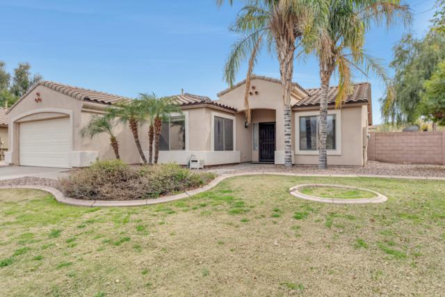 2575 E Morgan Drive, Gilbert, AZ 85295 (MLS #5893753) :: CC & Co. Real Estate Team
