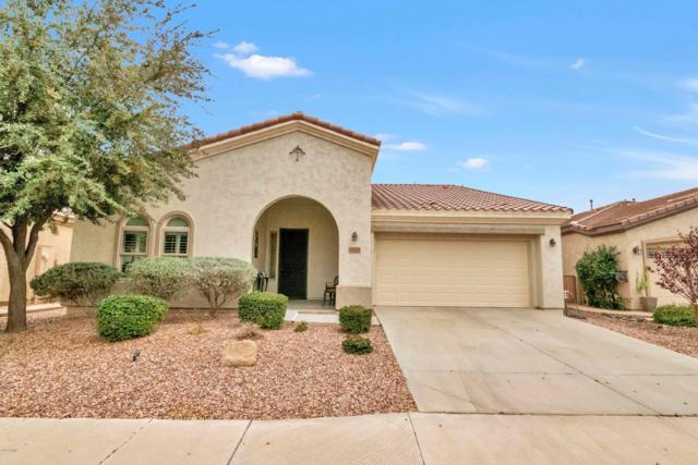 4605 E Blue Spruce Lane, Gilbert, AZ 85298 (MLS #5894074) :: CC & Co. Real Estate Team