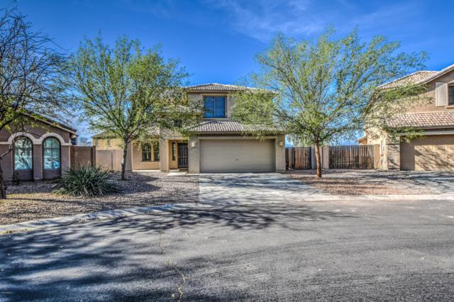 173 W Yellow Bee Drive, San Tan Valley, AZ 85143 (MLS #5894381) :: CC & Co. Real Estate Team