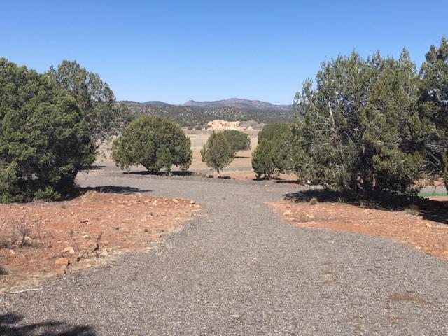 18750 E Bobcat Trail, Kingman, AZ 86401 (MLS #5894442) :: The Kenny Klaus Team