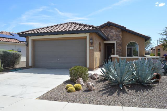 26157 W Vista North Drive, Buckeye, AZ 85396 (MLS #5894732) :: Yost Realty Group at RE/MAX Casa Grande