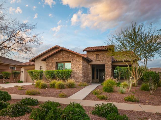 20590 W Western Drive, Buckeye, AZ 85396 (MLS #5894792) :: Yost Realty Group at RE/MAX Casa Grande