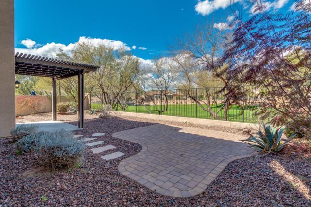 2410 W Jake Haven, Phoenix, AZ 85085 (MLS #5895821) :: Yost Realty Group at RE/MAX Casa Grande