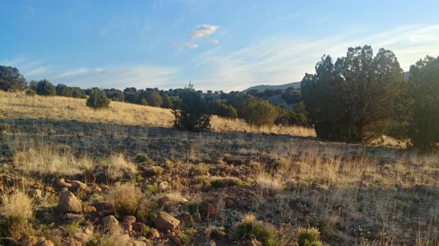 Lot 222 E Bravo Road, Wikieup, AZ 85360 (MLS #5895887) :: Devor Real Estate Associates