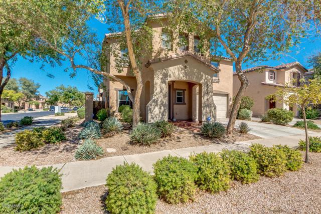 21112 E Avenida Del Valle, Queen Creek, AZ 85142 (MLS #5896035) :: Yost Realty Group at RE/MAX Casa Grande