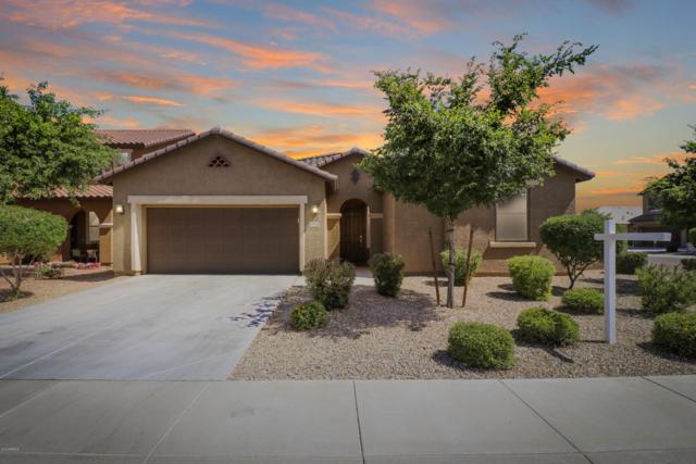 11952 W Overlin Lane, Avondale, AZ 85323 (MLS #5896323) :: The Daniel Montez Real Estate Group
