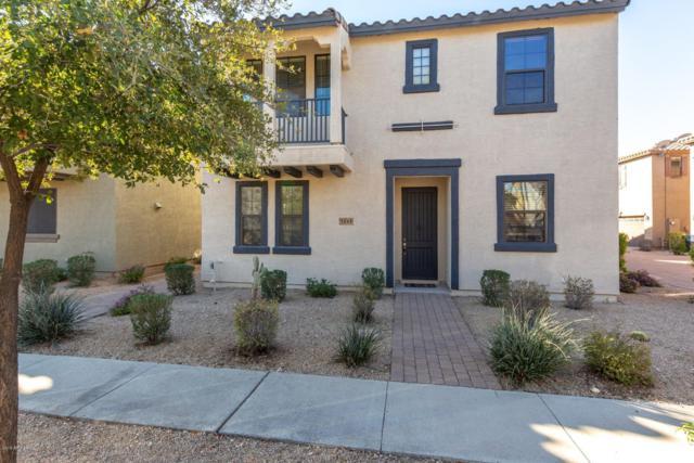 2363 W Dusty Wren Drive, Phoenix, AZ 85085 (MLS #5896427) :: Yost Realty Group at RE/MAX Casa Grande