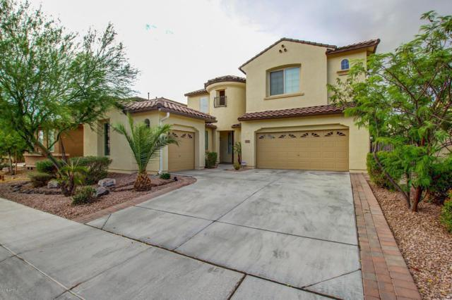 1541 W Flamingo Drive, Chandler, AZ 85286 (MLS #5896698) :: Yost Realty Group at RE/MAX Casa Grande