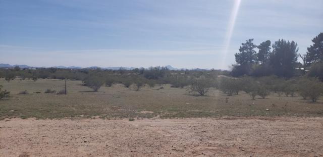 111 N 350th Avenue, Tonopah, AZ 85354 (MLS #5896985) :: The Garcia Group