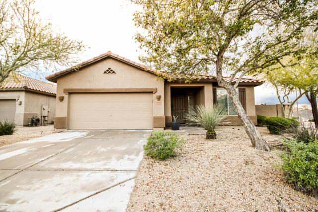 8568 W Maya Drive, Peoria, AZ 85383 (MLS #5897182) :: The Laughton Team