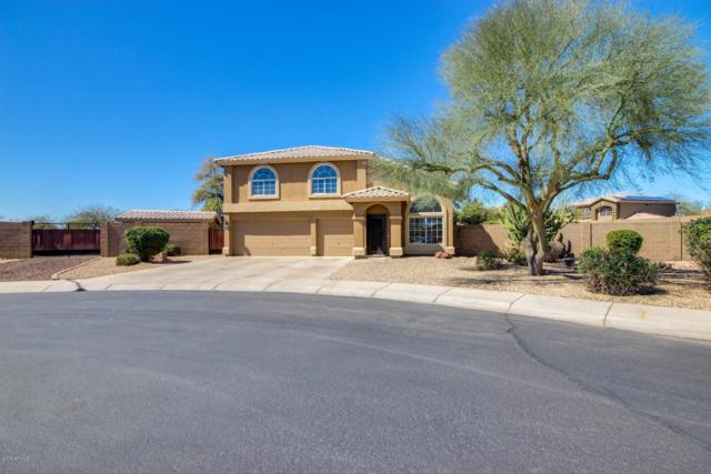 11406 N 126TH Drive, El Mirage, AZ 85335 (MLS #5897252) :: Yost Realty Group at RE/MAX Casa Grande