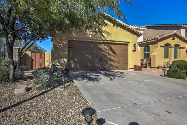 157 N 110TH Avenue, Avondale, AZ 85323 (MLS #5897438) :: Keller Williams Realty Phoenix