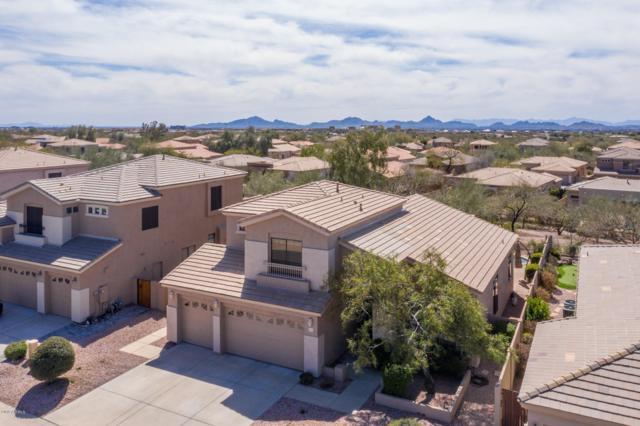 5205 E Hashknife Road, Phoenix, AZ 85054 (MLS #5897530) :: RE/MAX Excalibur