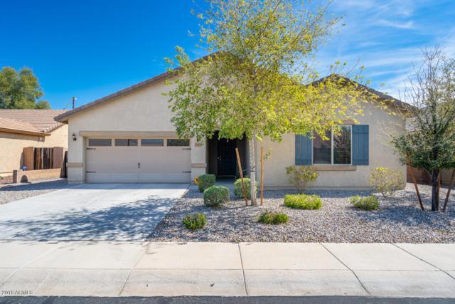 7025 S 251ST Drive, Buckeye, AZ 85326 (MLS #5897874) :: Yost Realty Group at RE/MAX Casa Grande