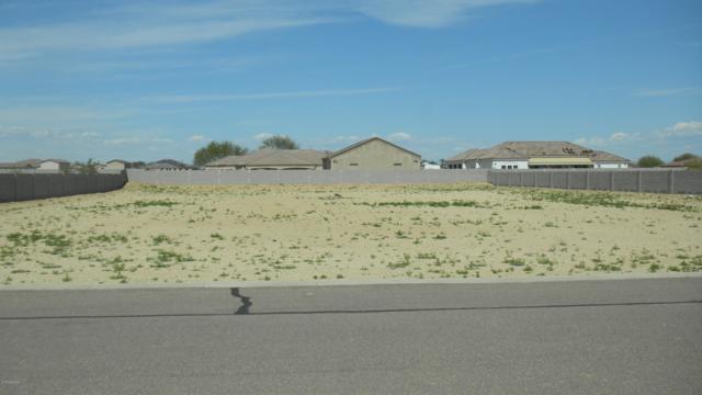 15928 W Cinnabar Court, Waddell, AZ 85355 (MLS #5898000) :: Yost Realty Group at RE/MAX Casa Grande