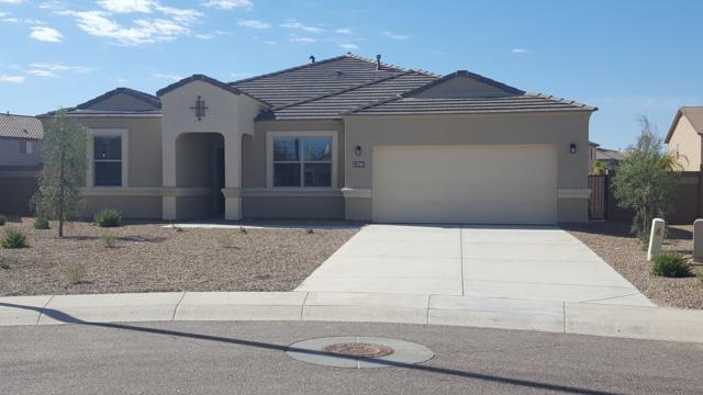 3724 N 302ND Circle, Buckeye, AZ 85396 (MLS #5898015) :: RE/MAX Excalibur