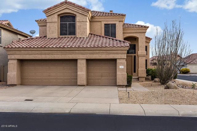 4227 E Desert Marigold Drive, Cave Creek, AZ 85331 (MLS #5898137) :: RE/MAX Excalibur