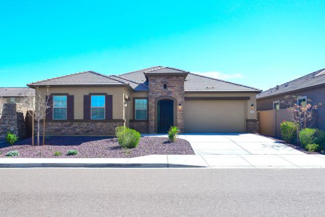 7931 W Spur Drive, Peoria, AZ 85383 (MLS #5898144) :: Yost Realty Group at RE/MAX Casa Grande