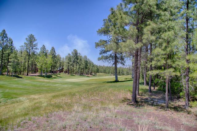 3931 W Shaggy Bark Road, Show Low, AZ 85901 (MLS #5898425) :: Team Wilson Real Estate