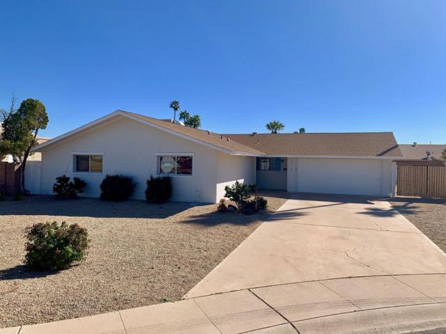 3915 S Juniper Street, Tempe, AZ 85282 (MLS #5898761) :: Team Wilson Real Estate