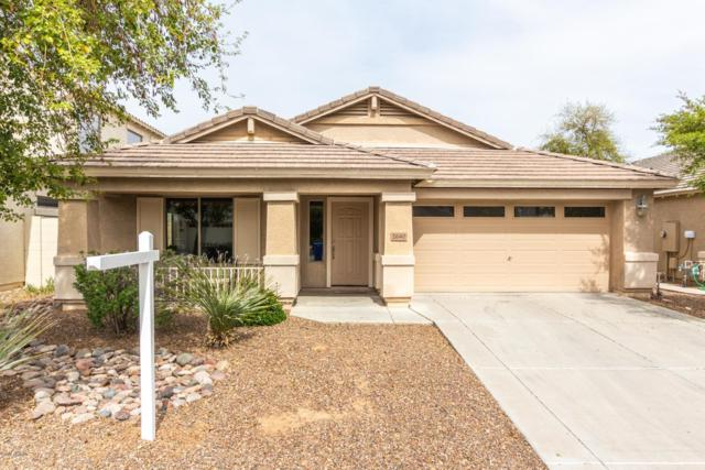 2640 E Jj Ranch Road, Phoenix, AZ 85024 (MLS #5899399) :: Occasio Realty