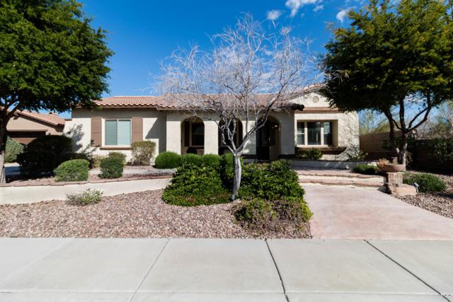 12416 W Dove Wing Way, Peoria, AZ 85383 (MLS #5899419) :: Riddle Realty