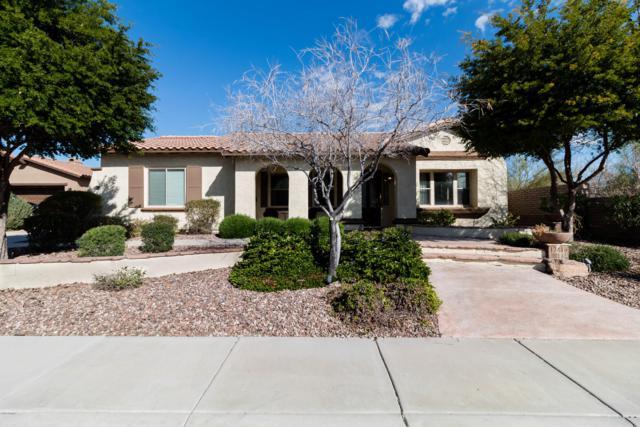 12416 W Dove Wing Way, Peoria, AZ 85383 (MLS #5899419) :: CC & Co. Real Estate Team