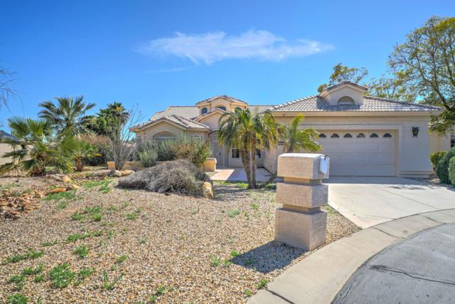 14961 W Pinchot Avenue, Goodyear, AZ 85395 (MLS #5899967) :: Santizo Realty Group