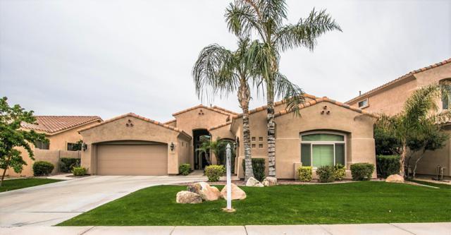 1613 W Kaibab Drive, Chandler, AZ 85248 (MLS #5900312) :: Yost Realty Group at RE/MAX Casa Grande