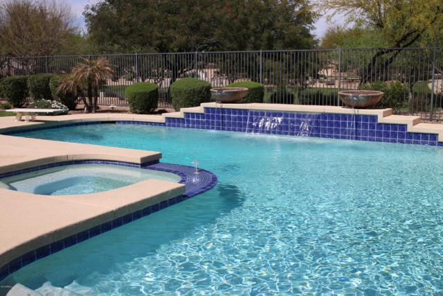 2540 E Coconino Drive, Chandler, AZ 85249 (MLS #5900355) :: Arizona 1 Real Estate Team