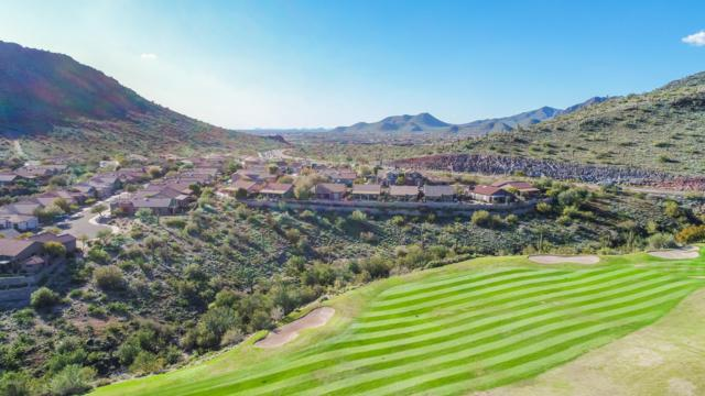 14339 E Thoroughbred Trail, Scottsdale, AZ 85259 (MLS #5900433) :: Yost Realty Group at RE/MAX Casa Grande